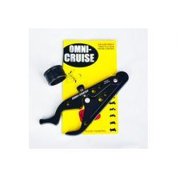 Omni Cruise Control