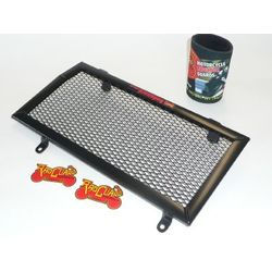 Radiator guard by RadGuard for BMW F800GS