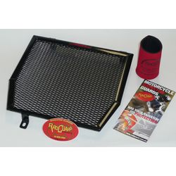 Radiator Guard by RadGuard for Triumph Tiger 1050
